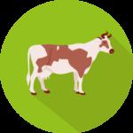 icône vache laitière